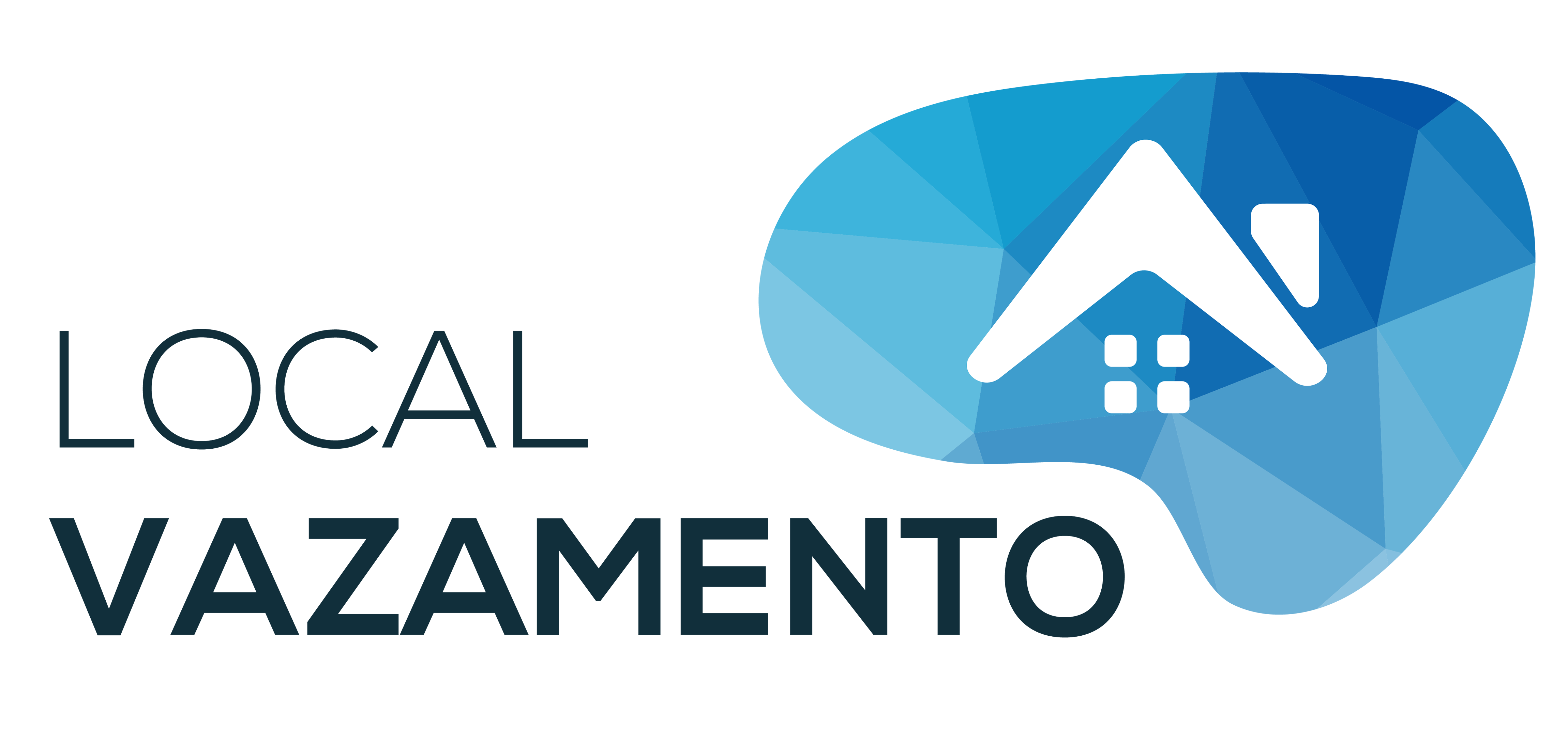 local-vazamento-logotipo-2019